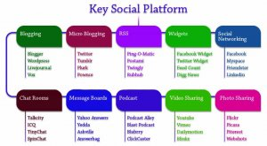social-media-chart-large