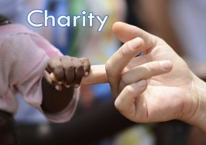 marketing charity program